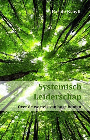 Afbeelding boek systemisch leiderschap door Bas de Kruyff