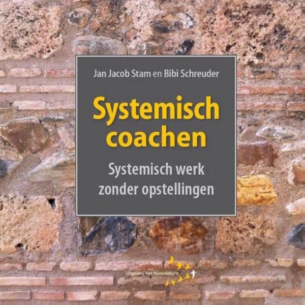 Afbeelding van het boek Systemisch coachen